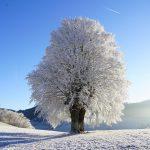 日月神示 全文:第三十巻 冬の巻